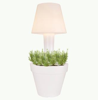 Patio Lamp (ELHO)