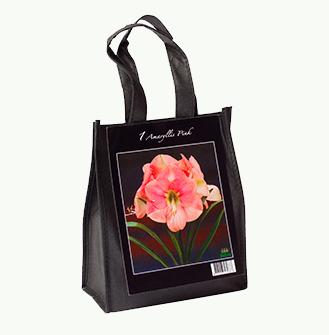 Roze Amaryllis in Cadeau tas